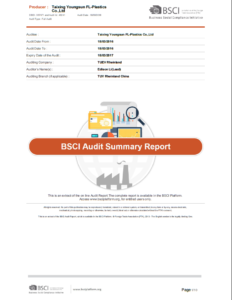 BSCI-Audit-Report
